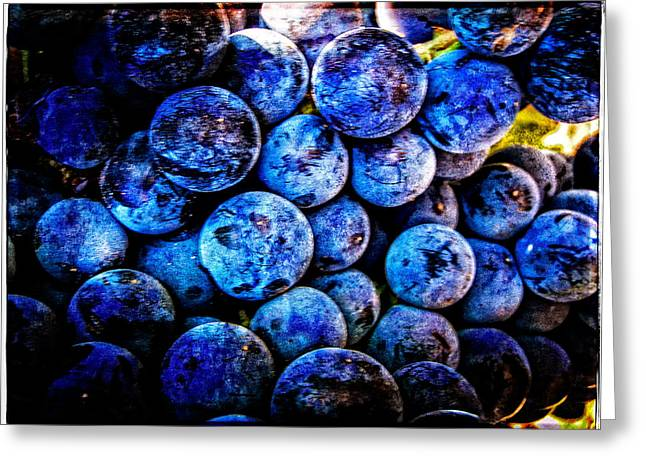 Blue Grapes Photographs Greeting Cards - Grapes Of Art 4 Greeting Card by Roxy Hurtubise