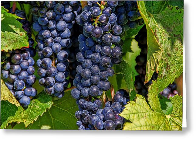 Vinegar Mixed Media Greeting Cards - Grapes on the Vine Greeting Card by Linda Muir