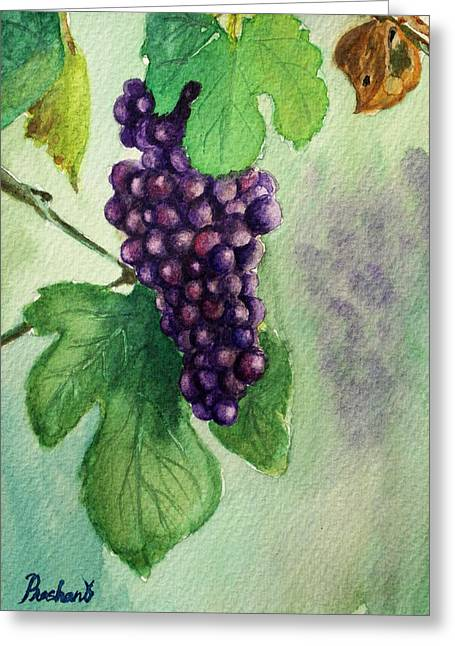 Grape Leaves Pastels Greeting Cards - Grapes on the vine Greeting Card by Prashant Shah