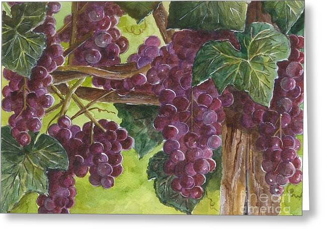 Purple Grapes Greeting Cards - Grapes on the Vine Greeting Card by Sheryl Heatherly Hawkins