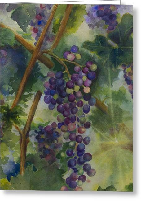 Grapes On Vine Greeting Cards - Baby Cabernets II   triptych Greeting Card by Maria Hunt