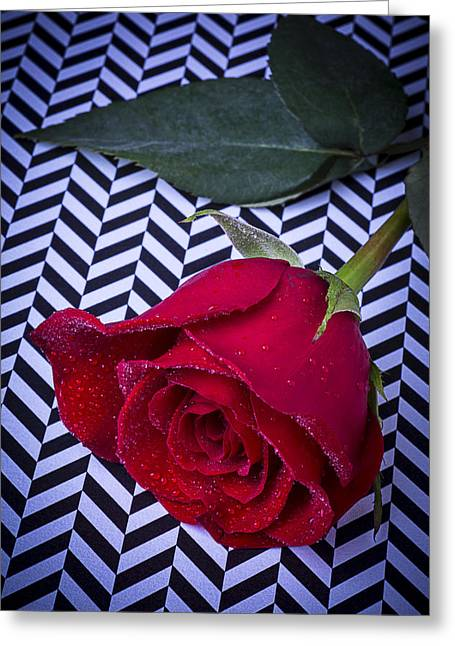 Graphic Photographs Greeting Cards - Graphic Rose Greeting Card by Garry Gay