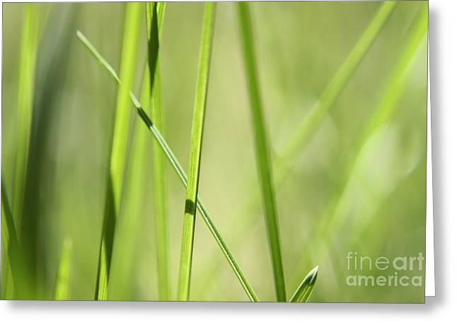 Grass Abstract - Woodie- Green 01 Greeting Card by Variance Collections