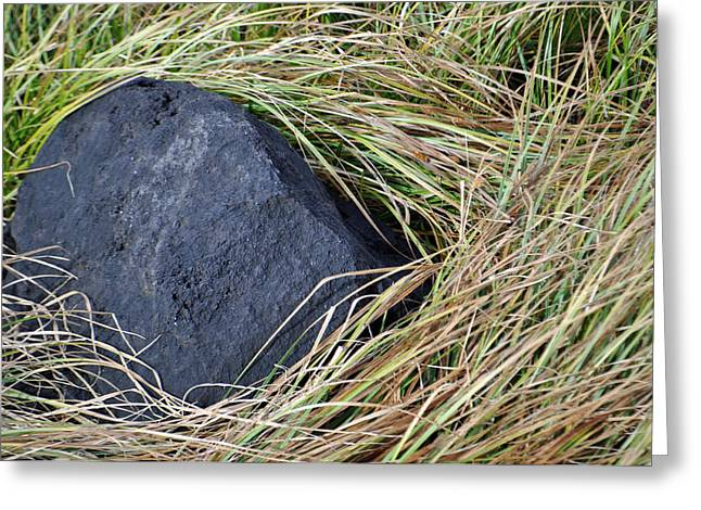 Blade Of Grass Greeting Cards - Grass and Volcanic Rock in Yellowstone National Park Greeting Card by Bruce Gourley
