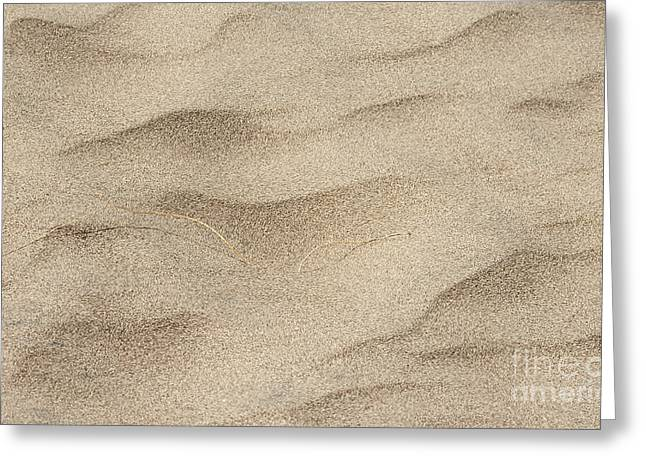 Sand Pattern Greeting Cards - Grass Blades Greeting Card by Phil McCollum