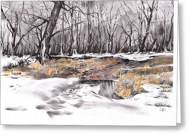 Woodland Scenes Drawings Greeting Cards - Grass Island Greeting Card by Paul Davenport