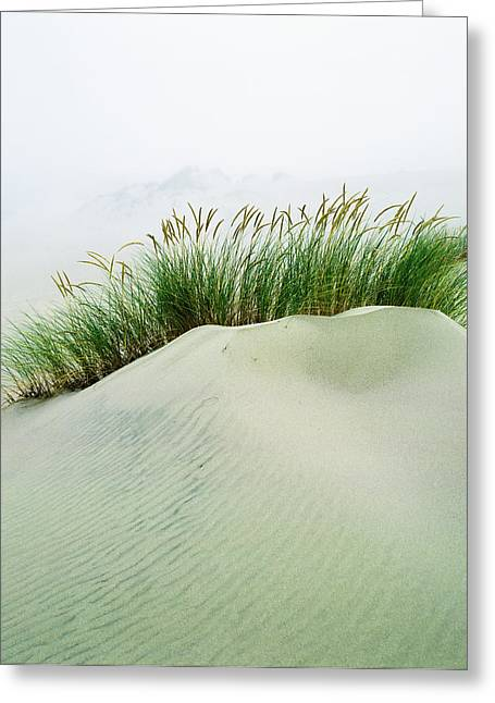 Grass On The Sand Dunes With Fog Greeting Card by Robert L. Potts