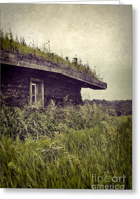 Pioneer Homes Photographs Greeting Cards - Grass Roof on Cottage Greeting Card by Jill Battaglia
