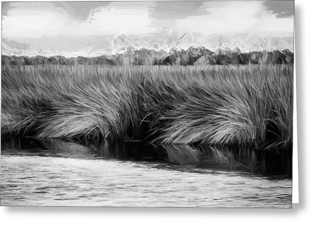 Florida Swamp Reflection Greeting Cards - Grasses at Sunset Painted BW Greeting Card by Rich Franco