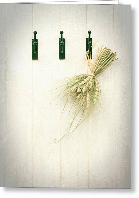 Wooden Shed Greeting Cards - Grasses Greeting Card by Amanda And Christopher Elwell
