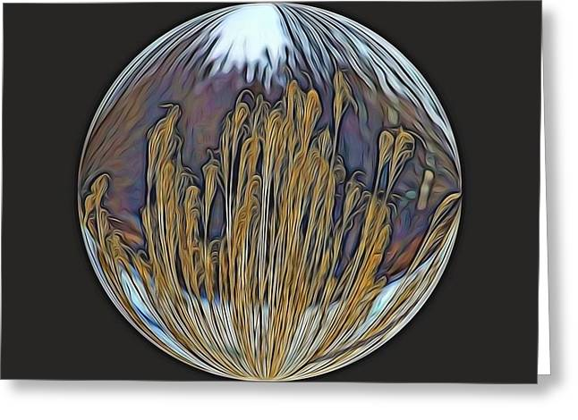 Stein Greeting Cards - Grasses in a Bubble. Greeting Card by Valerie Stein