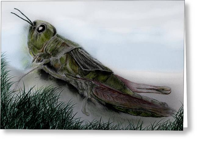 Adam Pastels Greeting Cards - Grasshopper Resting Greeting Card by Cynthia Adams
