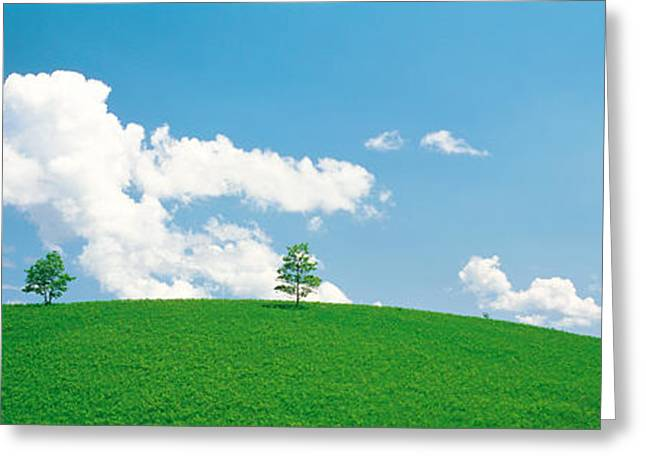 Aesthetic Landscape Image Greeting Cards - Grassland With Blue Sky And Clouds Greeting Card by Panoramic Images