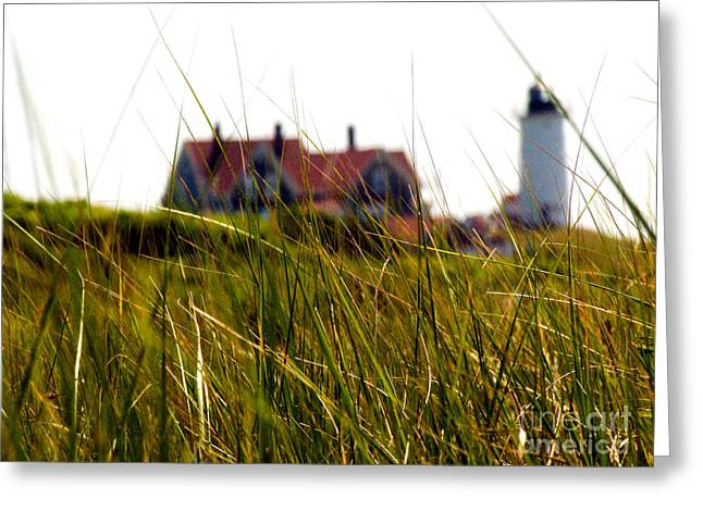 Grassy Field Greeting Cards - Grassy Field And The Nobska Lighthouse Greeting Card by Eunice Harris
