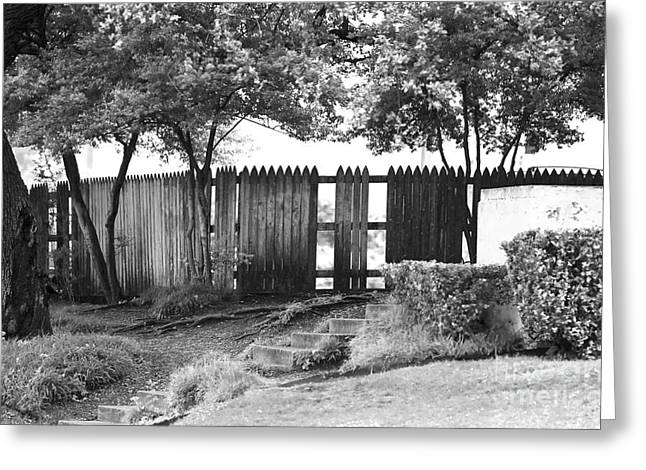 Photographers Dallas Greeting Cards - Grassy Knoll Greeting Card by John Rizzuto