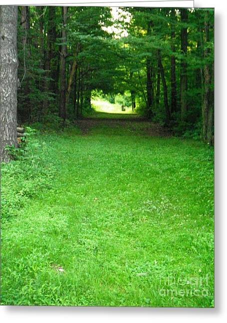 Esem8chart.com Greeting Cards - Grassy Path Greeting Card by Sarah Holenstein