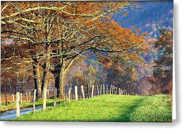 Gatlinburg Tennessee Greeting Cards - Grateful Drive in Fall Greeting Card by Susie Weaver