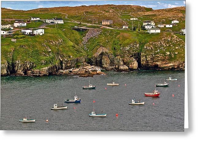 Grate Digital Greeting Cards - Grates Cove-NL Greeting Card by Ruth Hager