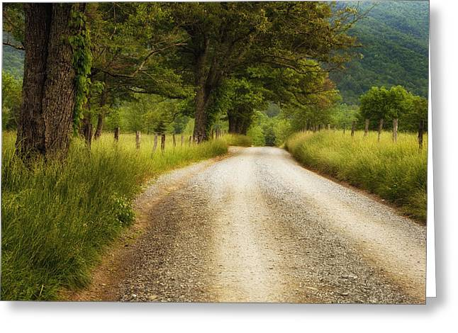 Cades Greeting Cards - Gravel Road in the Smokies Greeting Card by Andrew Soundarajan