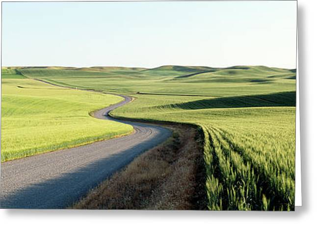 Counry Greeting Cards - Gravel Road Through Barley And Wheat Greeting Card by Panoramic Images
