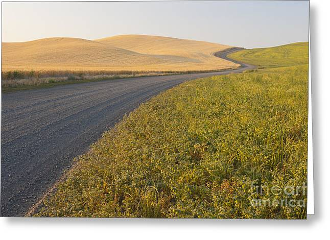 Gravel Road Greeting Cards - Gravel Road Through Farming Region, Wa Greeting Card by John Shaw