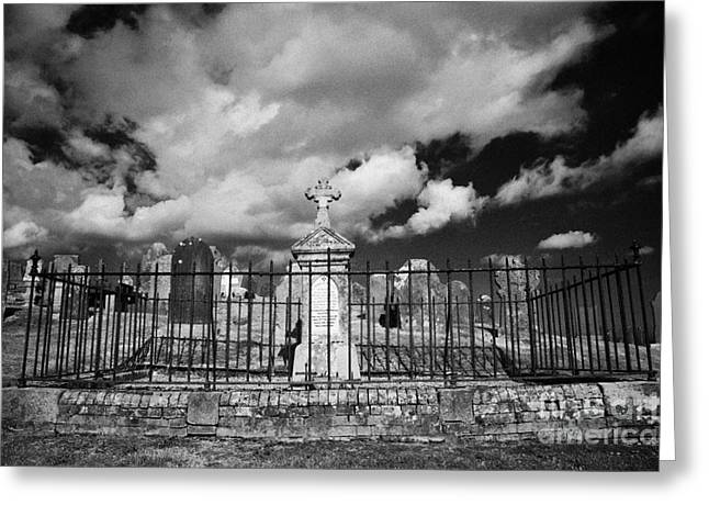 Headstones Greeting Cards - graves and headstones surrounding traditional family burial plot in the graveyard at St John the Apostle Ardnamine church courtown  Greeting Card by Joe Fox