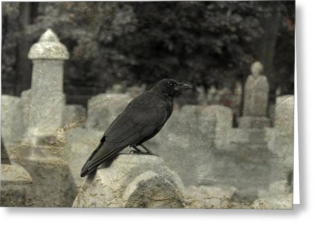 Common Crows Greeting Cards - Graveyard Bird Greeting Card by Gothicolors Donna Snyder