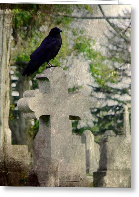 Ravens In Graveyard Greeting Cards - Graveyard Occupant Greeting Card by Gothicolors Donna Snyder