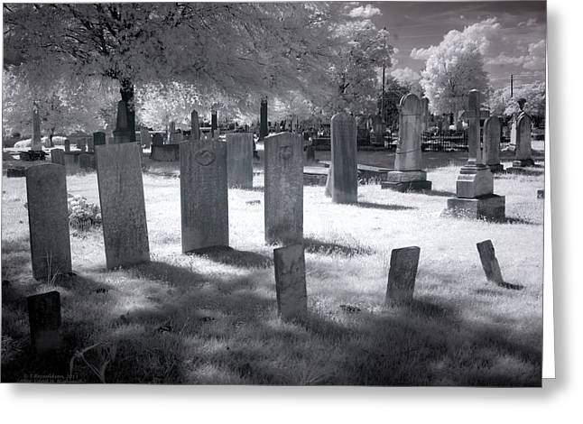 Ghostly Photographs Greeting Cards - Graveyard Greeting Card by Terry Reynoldson