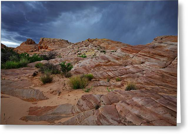 Nevada State Park Greeting Cards - Gray and Red Greeting Card by Rick Berk
