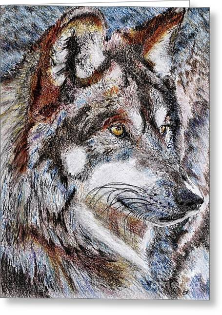 Mccombie Drawings Greeting Cards - Gray Wolf Watches and Waits Greeting Card by J McCombie