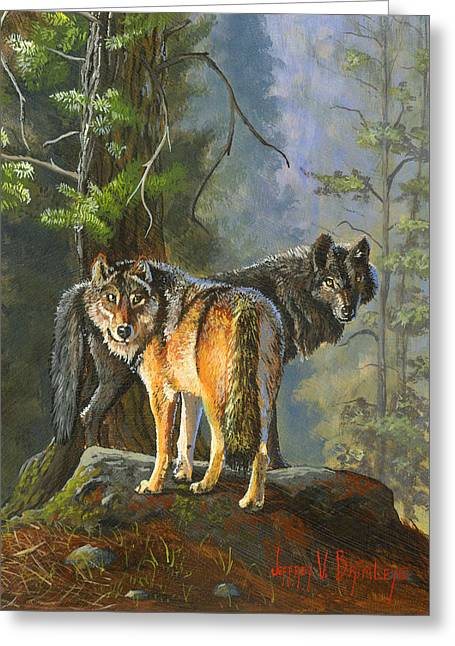 Pine Needles Paintings Greeting Cards - Gray Wolves Greeting Card by Jeff Brimley