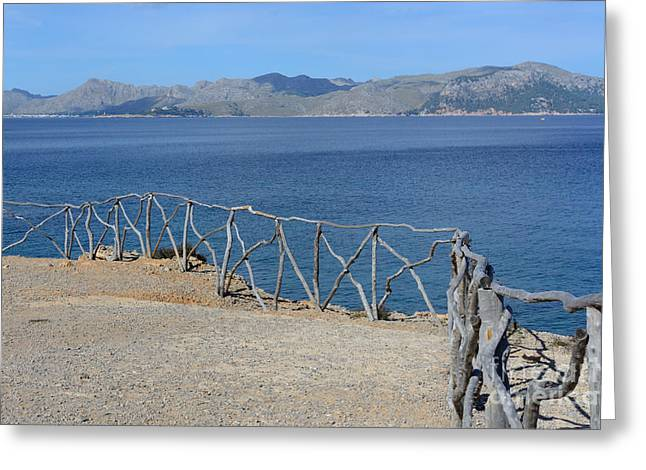 Peaceful Scenery Greeting Cards - Gray wood fence  Greeting Card by Christina Rahm