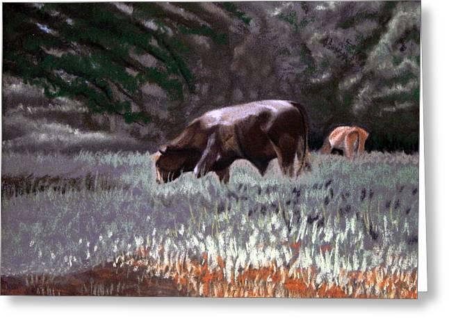 Bulls Pastels Greeting Cards - Grazing Bull Greeting Card by Tanya Provines
