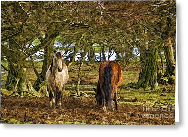Grazing Snow Greeting Cards - Grazing Horses Greeting Card by Steve Purnell