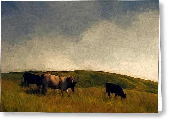 Sonoma Mixed Media Greeting Cards - Grazing Greeting Card by John K Woodruff