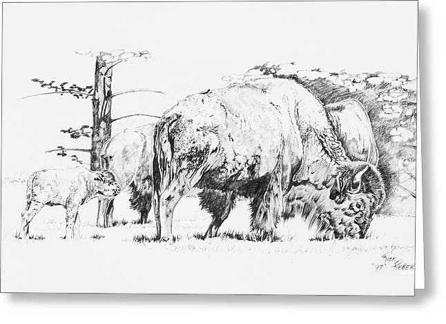 Wild Life Drawings Greeting Cards - Grazing Land Greeting Card by Rick Reber