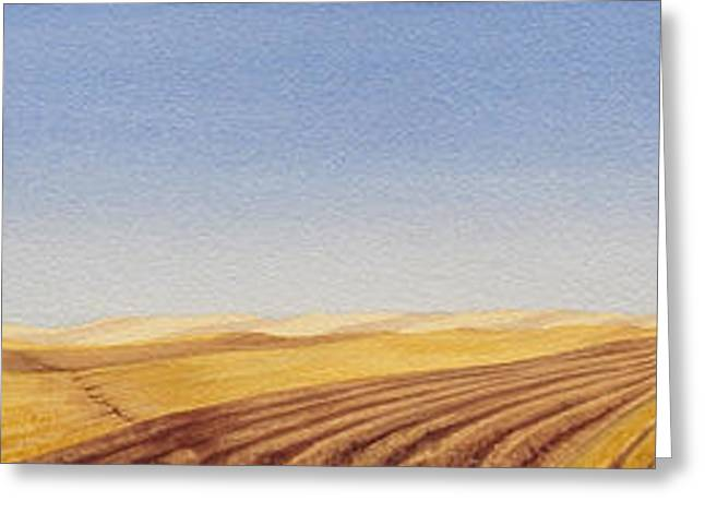 High Plains Greeting Cards - Grazing Greeting Card by Scott Kirby