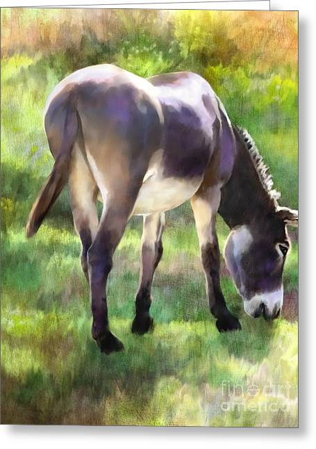 Donkey Mixed Media Greeting Cards - Grazing Greeting Card by Ursula Freer