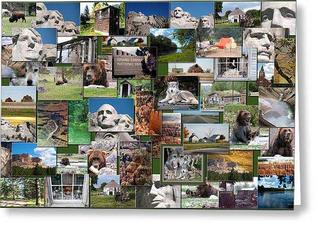 Coller Greeting Cards - Great American Outdoors Collage Rectangle Greeting Card by Thomas Woolworth