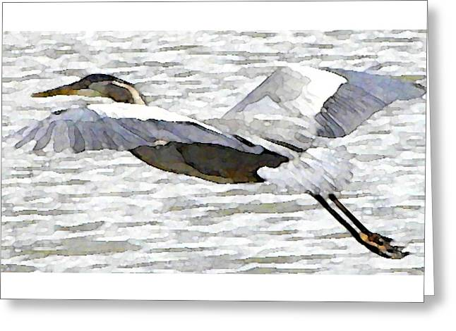 Great Blue Flight Greeting Card by John Goyer