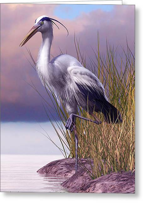 Sea Birds Greeting Cards - Great Blue Heron Greeting Card by Gary Hanna