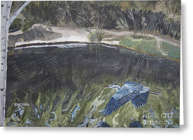 Park Scene Paintings Greeting Cards - Great Blue Heron in Flight Greeting Card by Ian Donley