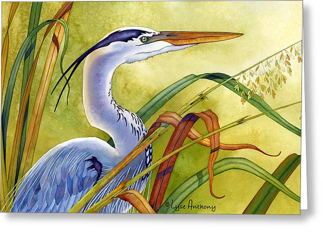Egret Greeting Cards - Great Blue Heron Greeting Card by Lyse Anthony