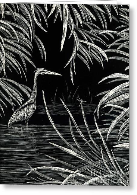 Terri Waters Drawings Greeting Cards - Great Blue Heron Greeting Card by Terri Mills