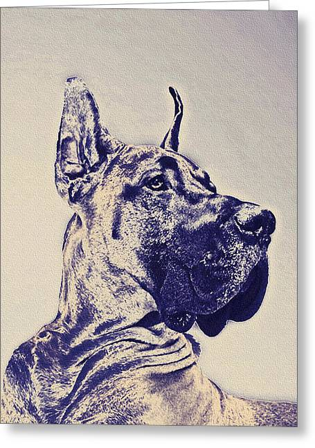 Pet Portraits Digital Art Greeting Cards - Great Dane- Blue Sketch Greeting Card by Jane Schnetlage