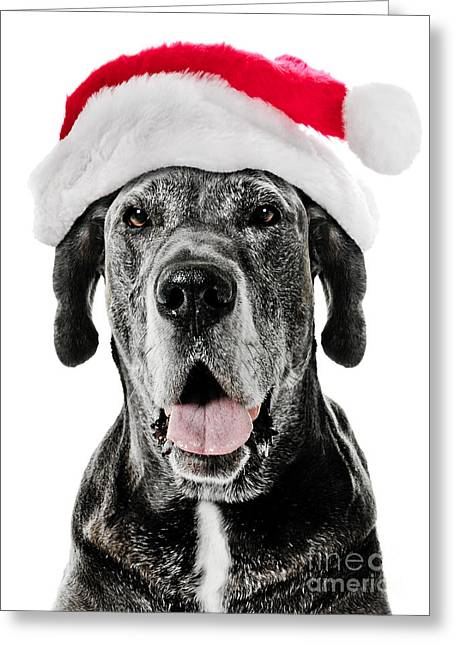 Doggy Cards Greeting Cards - Great Dane Santa Greeting Card by Jt PhotoDesign