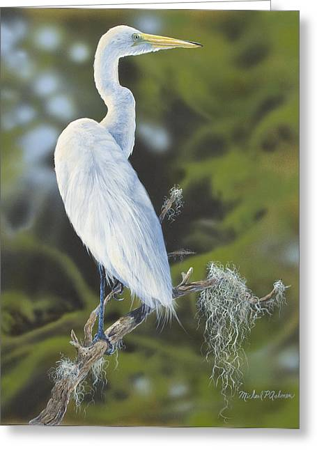 Moss Green Drawings Greeting Cards - Great Egret Greeting Card by Michael Ashmen