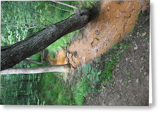 Greatfalls Greeting Cards - Great Falls Park - 121220 Greeting Card by DC Photographer