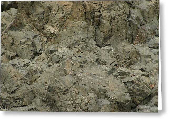 Rocks Photographs Greeting Cards - Great Falls VA - 121253 Greeting Card by DC Photographer